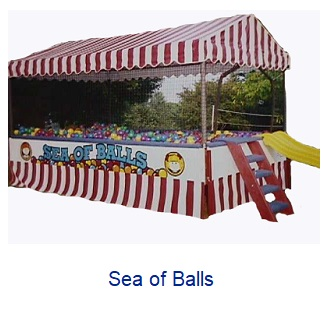 Sea of Balls - Inflatables WV - Bounce House WV - Quantum Party Rentals